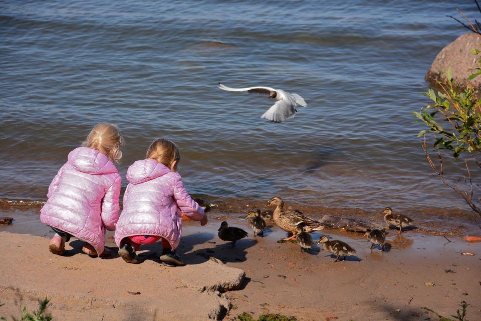 男孩和女孩在Moyka河,圣彼得堡,俄罗斯