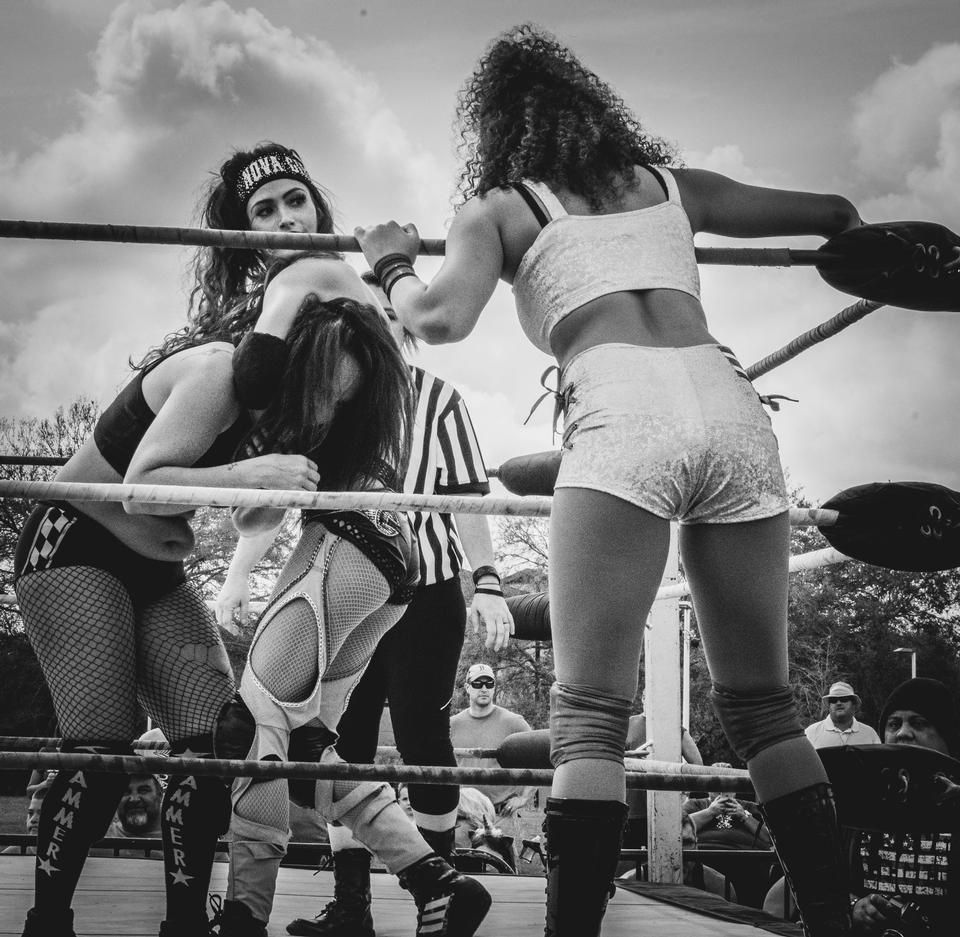 Women's professional wrestling
