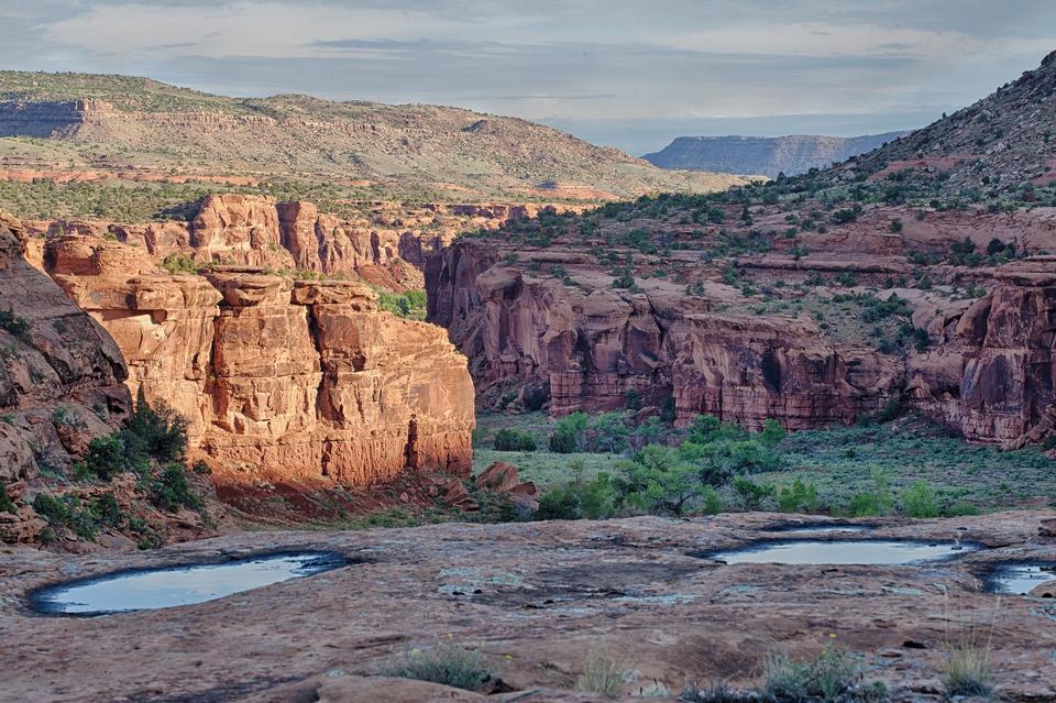 Área de Conservación Nacional Domínguez Escalante