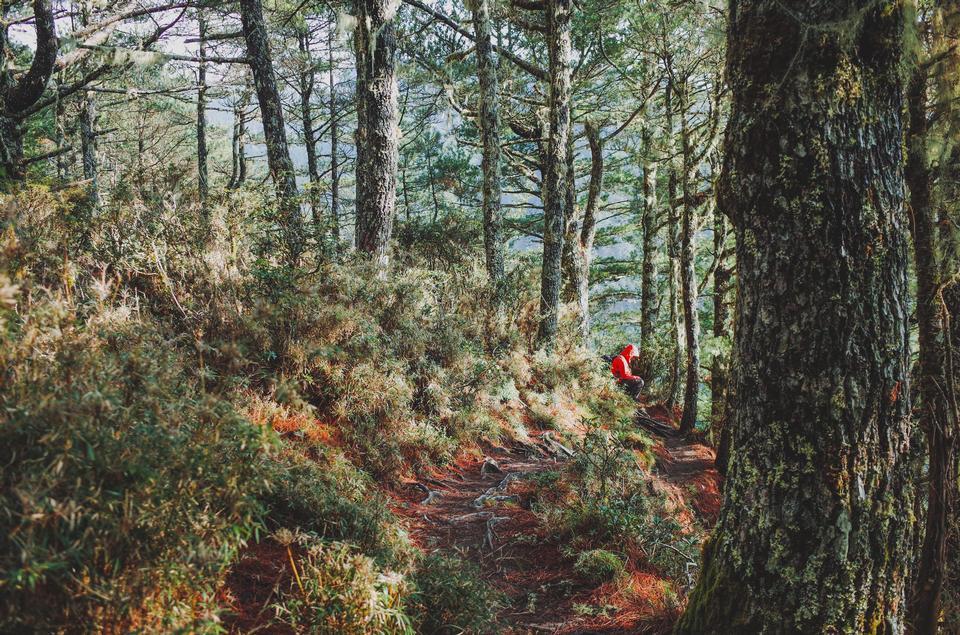 Garding Lake Trail