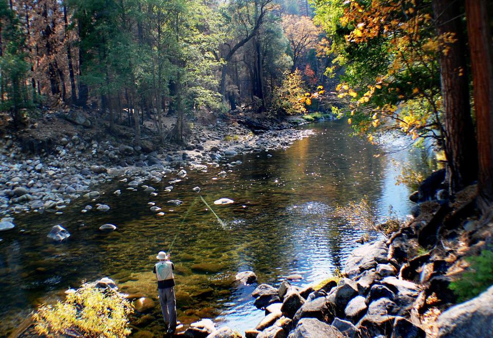 pesca nel parco nazionale di Yosemite