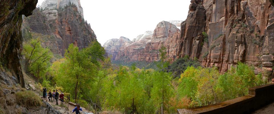 Parc national de Zion.Utah