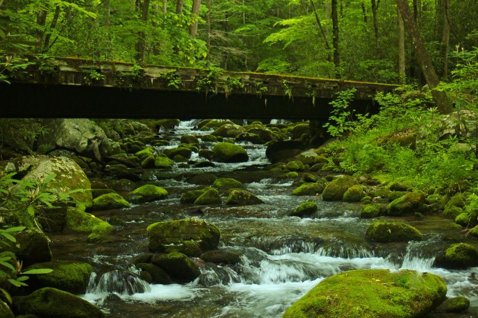 Graet Smoky Mountains国家公园