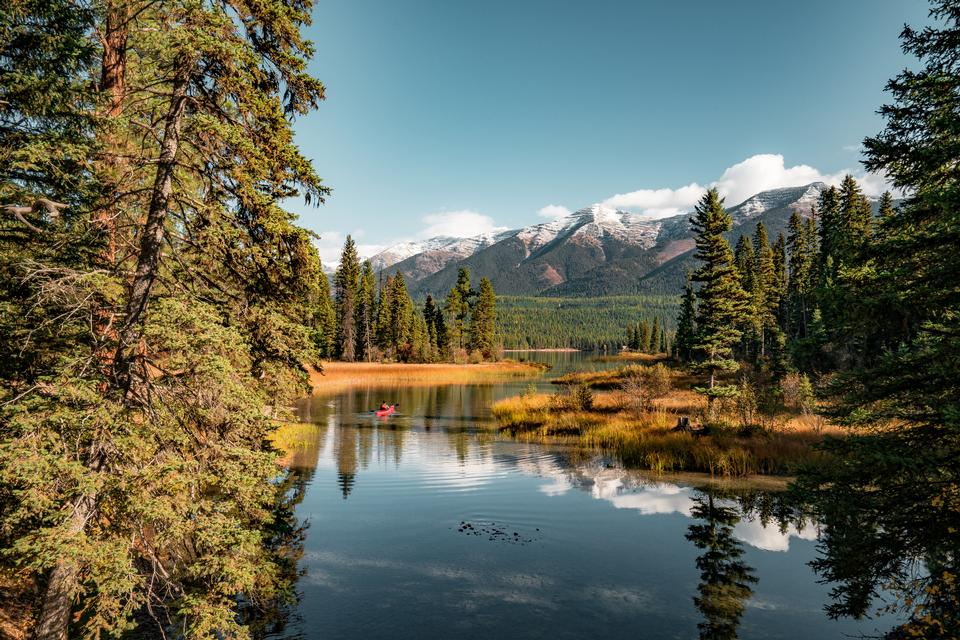 Flathead National Forest in Montana