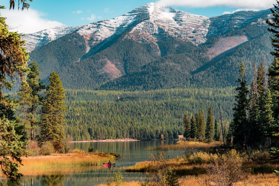 Flathead National Forest nel Montana