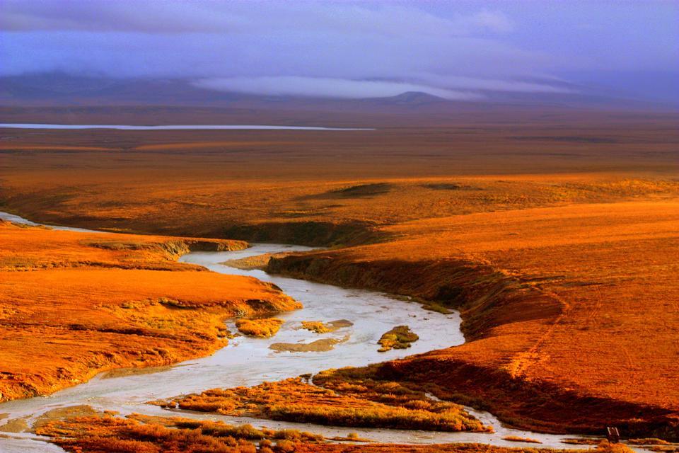 白令陸橋國家保護區
