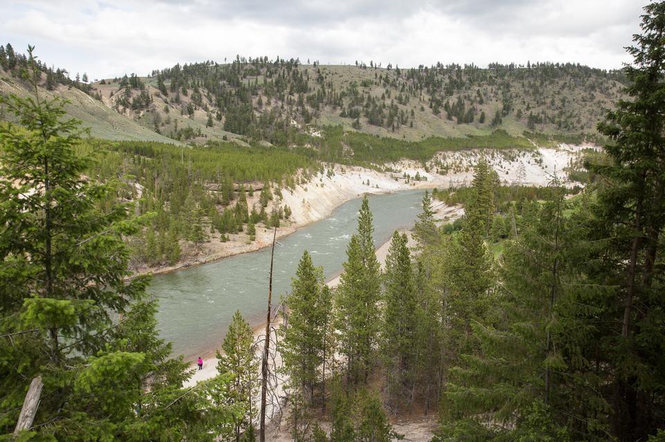 Mount Washburn Trail, Yellowstone National Park