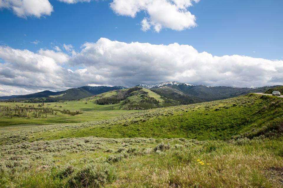 Mount Washburn Trail, Parque Nacional de Yellowstone