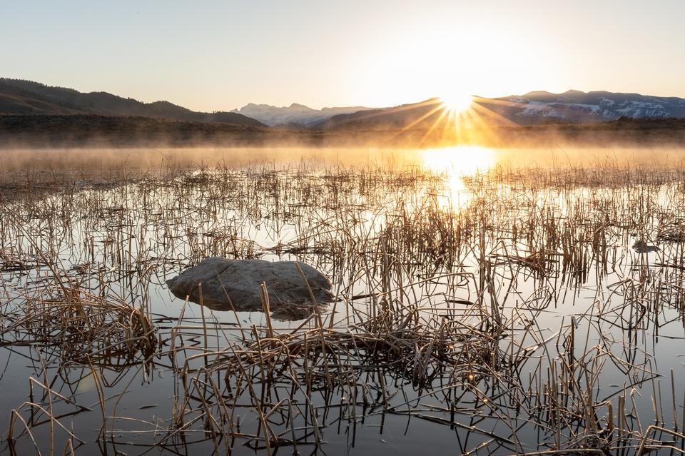 はかない池の日の出
