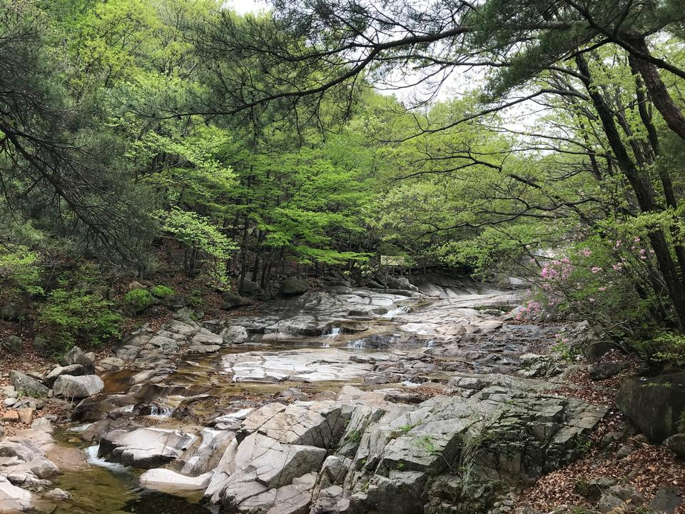 Gajisan state park in South Korea