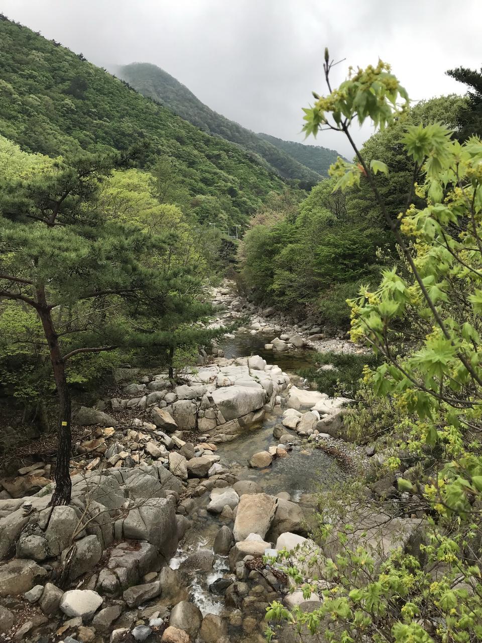 Gajisan state park in South Korea