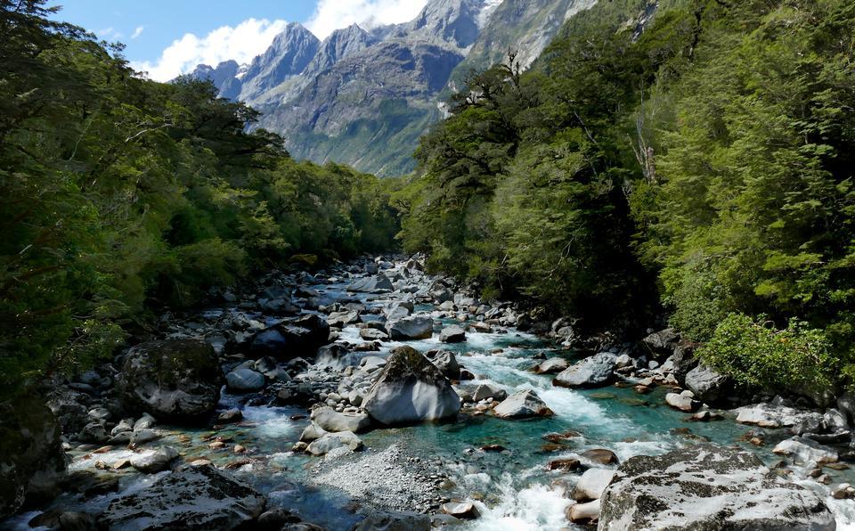 Tutuko River Fiordland National Park