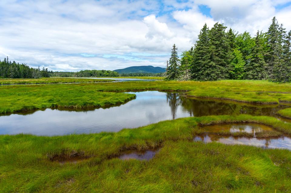アカディア国立公園