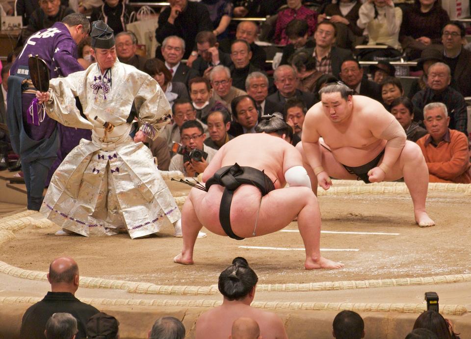 Sumo japonais wresler
