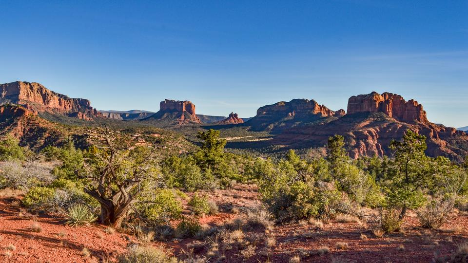 Coconino National Forest in Arizona
