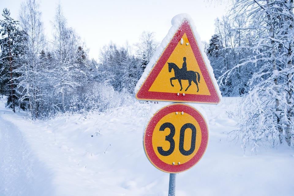 traffic sign horses