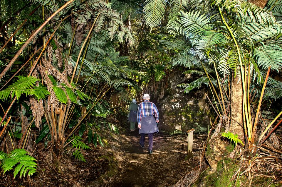 Halemaumau Trail徒步旅行者