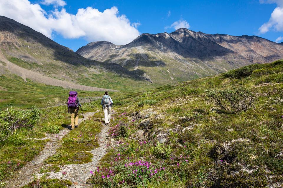 Hiking from the Landing Strip Alaska