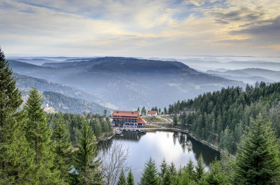 山区度假村在森林里