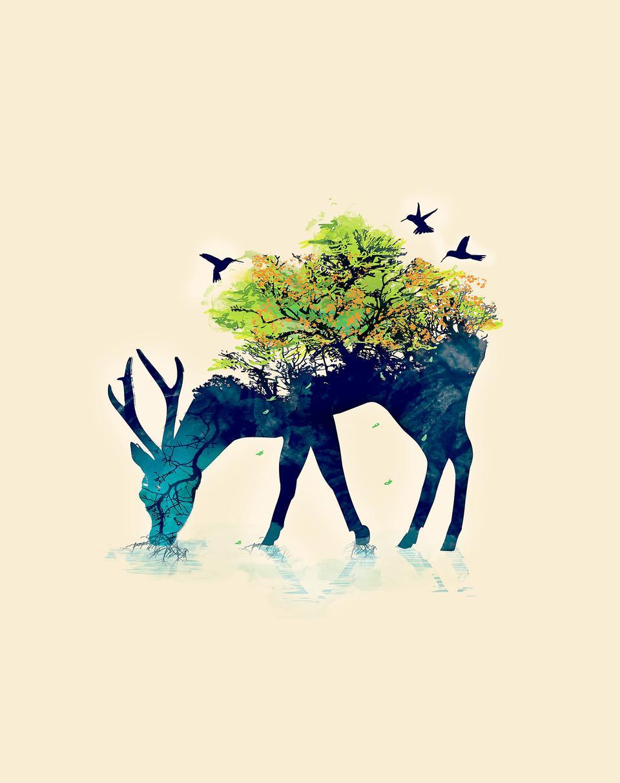 David's deer4