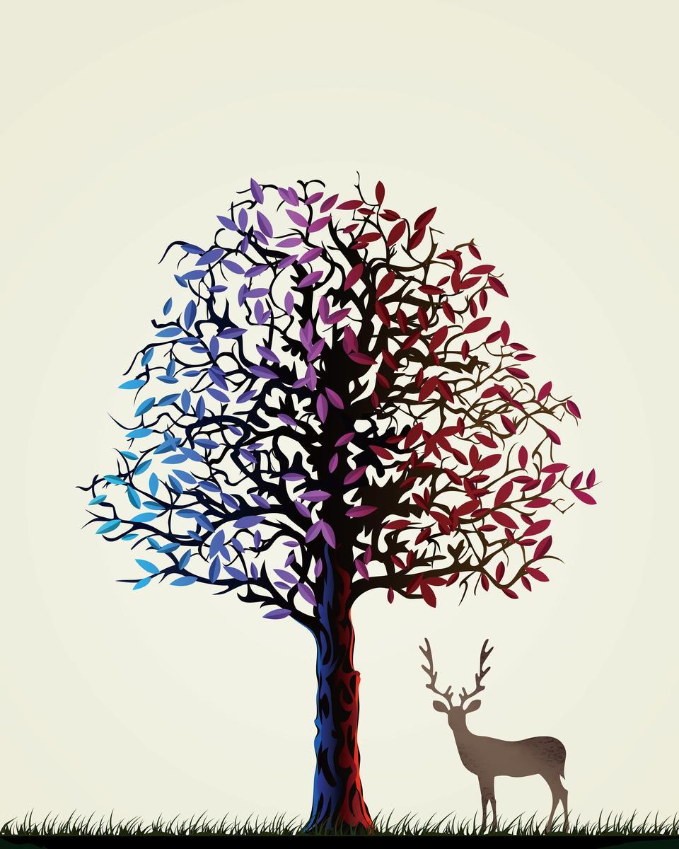 David's deer 1
