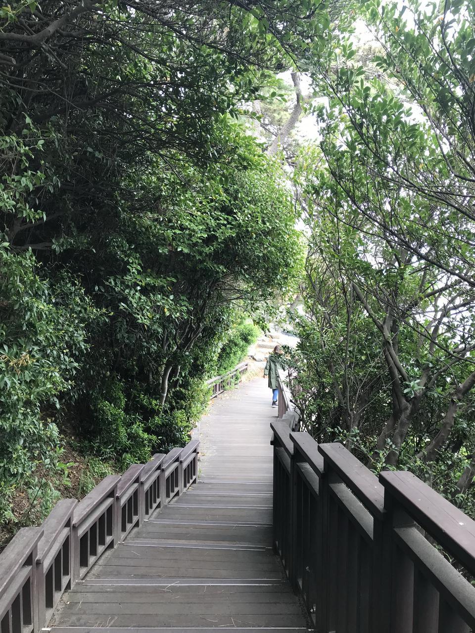 부산 해운대 동백섬