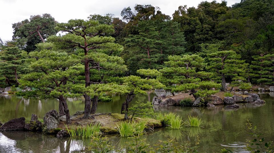 京都日本花園