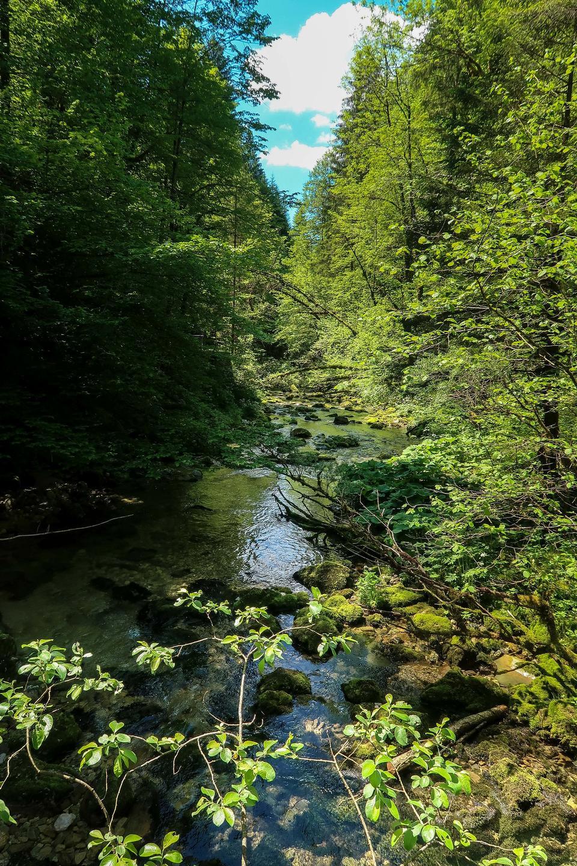 ジュラ山脈川の風景、フランス
