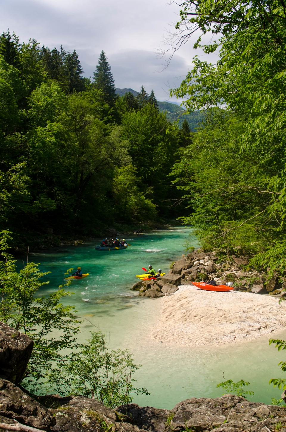 River rafting in the forests