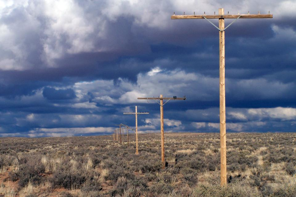 Utility pole in national park