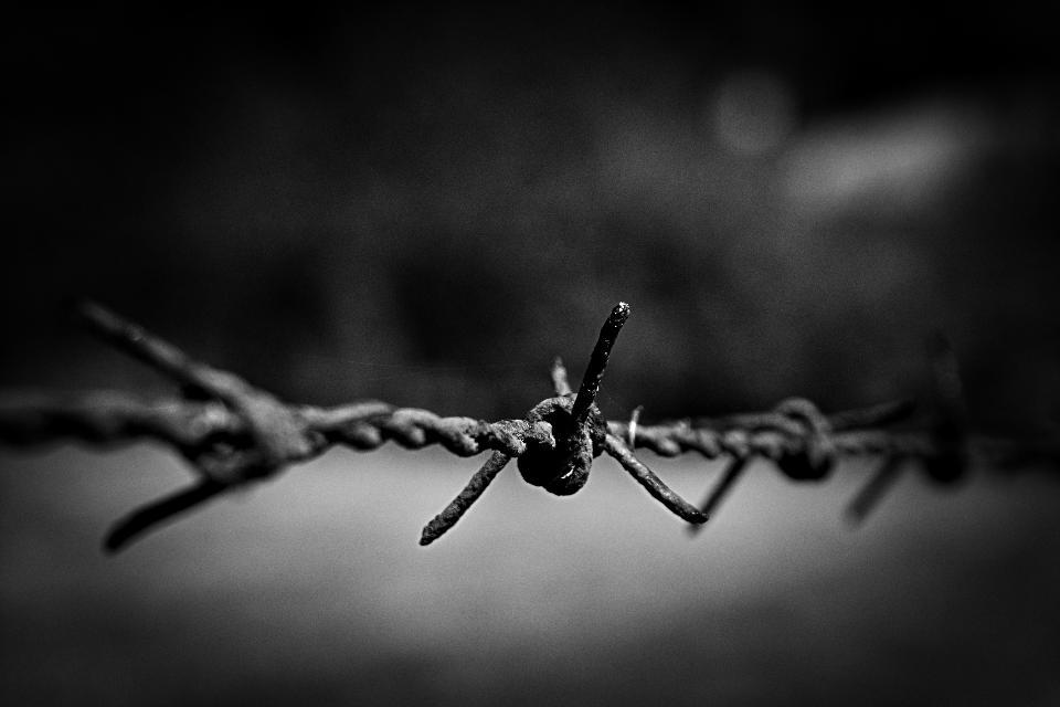铁丝网无缝