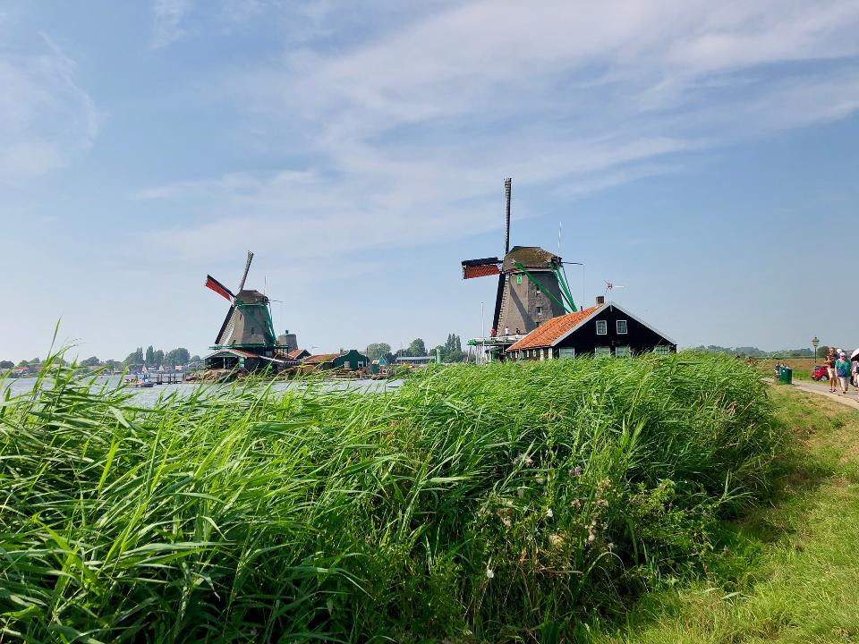 Beautiful Landscape in North Holland, Holland