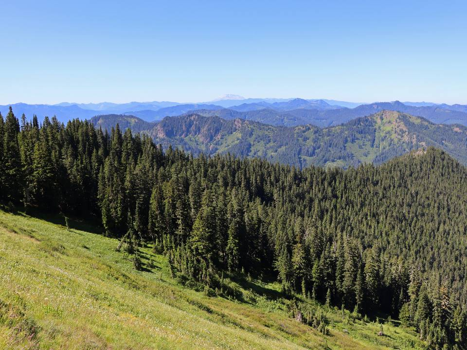 Tatoosh Wilderness and Gifford Pinchot National Forest