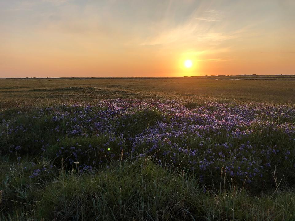 Sunset in Arctic National Wildlife Refuge