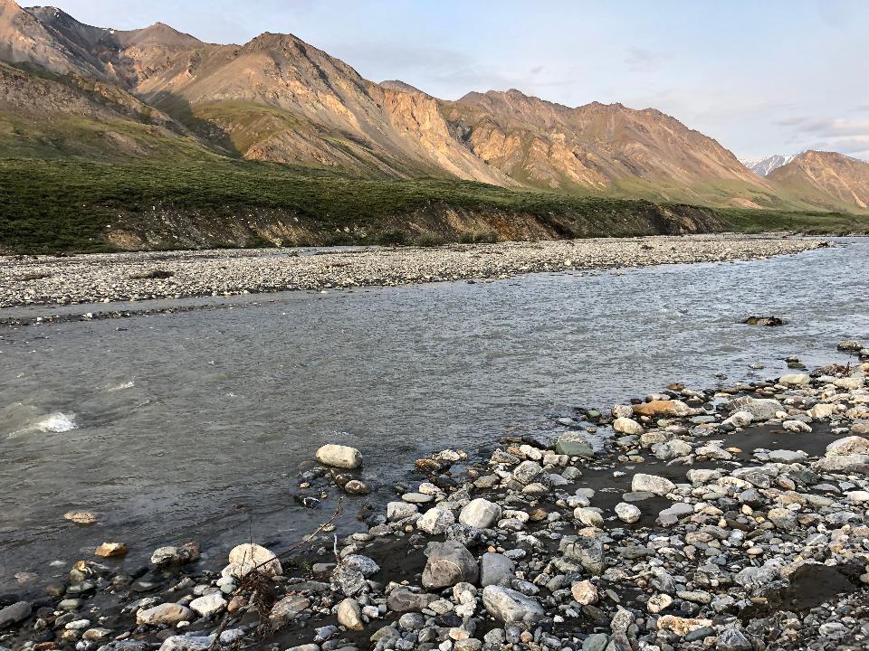 北極圏国立野生生物保護区