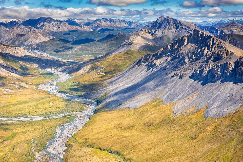 알래스카 미국에서 북극 국가 야생 동물 피난처