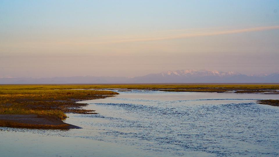 Beauty and birds in Arctic National Wildlife Refuge