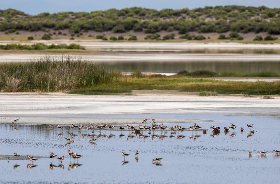 Blanca Wetlands Recreation Area