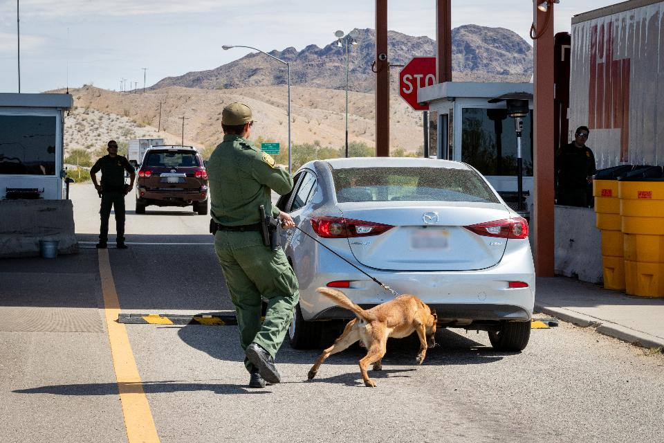 Border Patrol Agents conduct operations