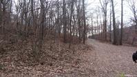 Appalachian Trail: rt 50 to rt 605